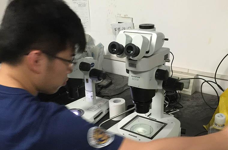 显微镜的日常维护细则