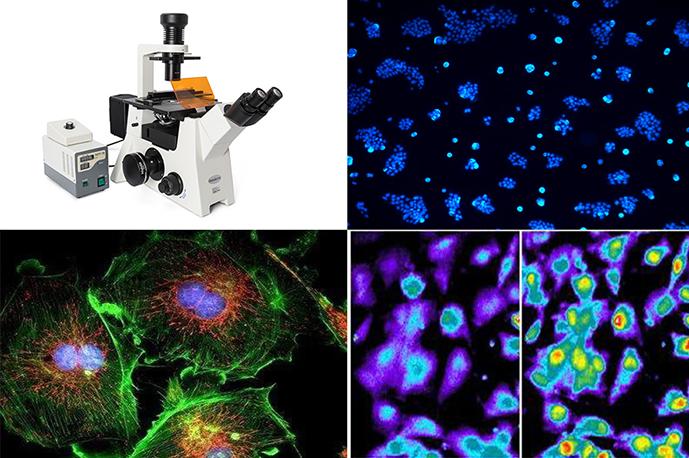 落射荧光显微光源采用模块化设计理念