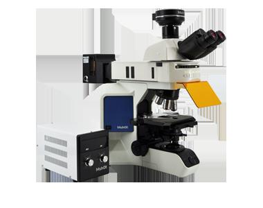 研究级正置荧光显微镜MF43-N