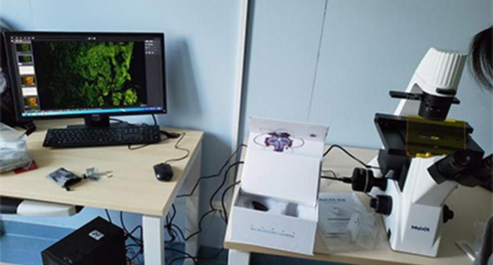 倒置荧光显微镜应用于北京大学深圳医院口腔上皮细胞观察