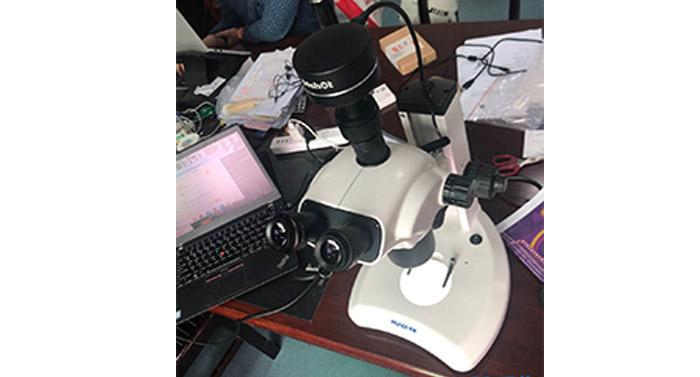 看植物花粉,叶尖等形貌用什么显微镜及显微镜相机?