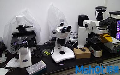 荧光模块、显微镜相机助力高校人类遗传学研究