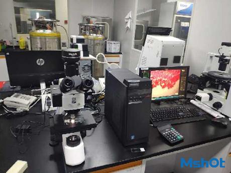 明美LED荧光模块应用于病毒基因测序