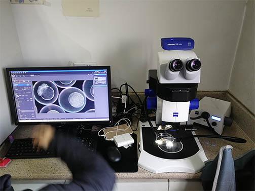 明美显微镜荧光模块助力第四军医大学口腔医院生物观察