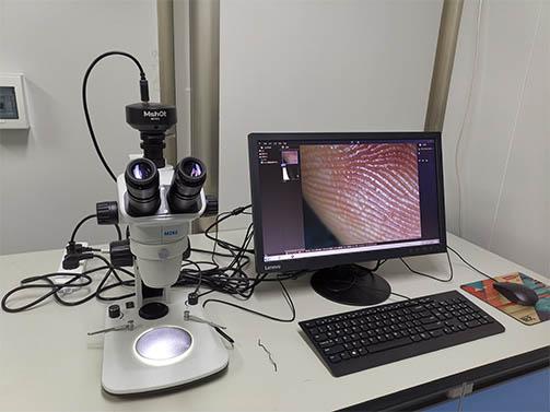 明美体视显微镜助力湖南师范大学胚胎样品观察