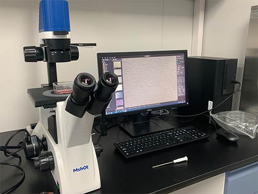 明美细胞工厂显微镜助力中山大学干细胞检测