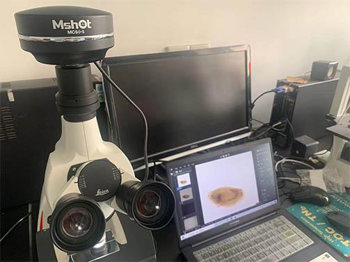 显微镜相机助力中科院南海海洋研究所海洋浮游生物观察