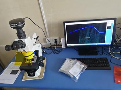 明美显微镜相机MSX2用于拍摄金葡菌