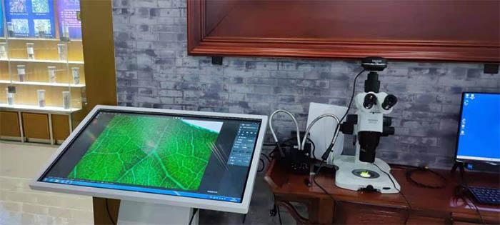 显微镜相机用于中药标本检测
