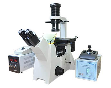 电动荧光显微镜.jpg