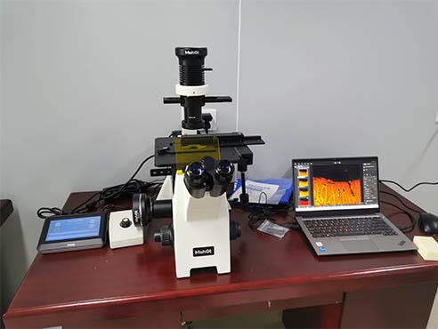 倒置荧光显微镜助力活细胞荧光转染观察